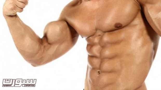 العضلات